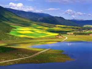 Qinghai-Lake-lacs de chine
